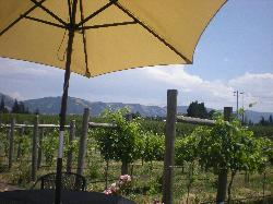 Hood River Vineyards