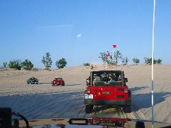 Parrot's Landing Jeep Rentals and Tours