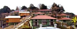 Tairka'S Jungle Retreat, Chail