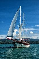 Boutique Yachting - Day Cruises