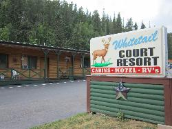 ‪Whitetail Court Motel and Campground‬