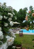 Villa Mirella Beach bed & breakfast