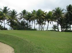 Palmas Del Mar Golf Club