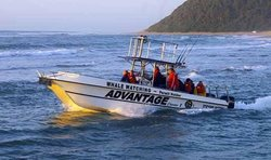 Advantage Tours Whale Watching