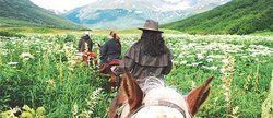 Alaska Horsemen Day Trail Adventures