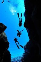 Freedive UK - Private Tours