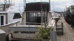 ‪Just Wonderfil Sport Fishing‬