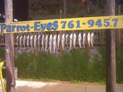 Parrot Eyes Fishing Charters