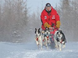 Wapusk Adventures Day Tours