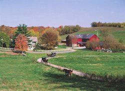 Yoder's Amish Home