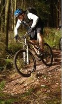 Forest Cycle Hire Ltd-Day Bike Tours