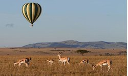 Hot Air Safaris