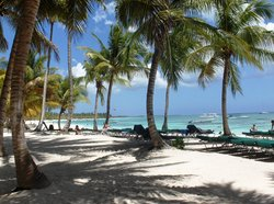 Pro excursions Bayahibe