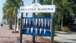 Sailfish Marina - Water Tour of Palm Beach-Day Tours
