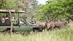 ‪Rhino River Lodge‬