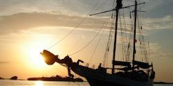 Sunset Champagne Cruise Miami Aqua Tours