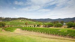 Hunter Valley Boutique Wine Tours