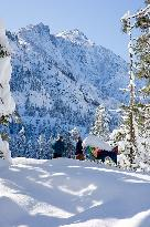 Sleeping Lady Mountain Resort Leavenworth