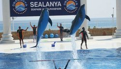 Sealanya Dolphinpark Seapark