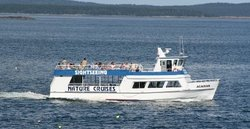 Acadian Nature Cruises