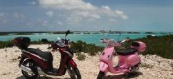 ‪Paradise Scooters - Vespa Rentals and Tours‬
