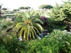 Bed and Breakfast Il Giardino di Villa Anna