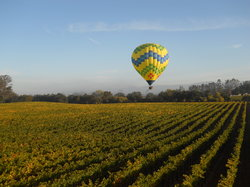 Up & Away Ballooning