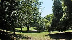 Ellington Park