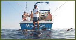 Marlintini Sportfishing