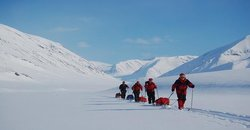 Svalbard Wildlife Expeditions Day Tours