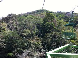 Gamboa Rainforest Resort Aerial Tram Tour
