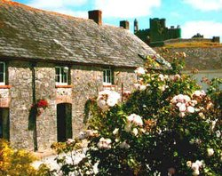 Cashel Farmhouse Lodge and Camping
