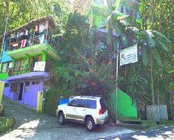 Pura Vida Hostel Manuel Antonio