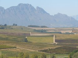 Simonsberg over Wine Farms at Paarl