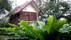 Thai Bamboo Guesthouse