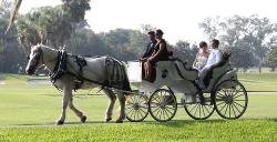 Three Oaks Carriage Company Day Tours