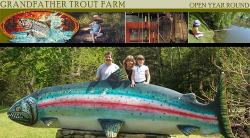 Grandfather Trout Farm