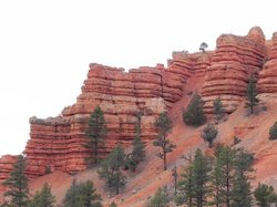 Red Canyon Trail Rides