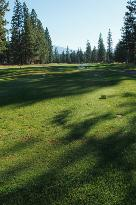 Lake Shastina Golf Resort - Championship Course