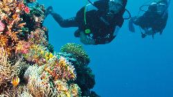 Adventure Diving Services of Cape Cod