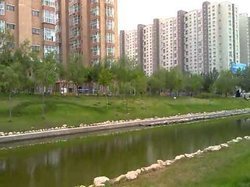 Daqing Forest Park