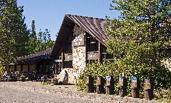 Rainier Mountain Lodge