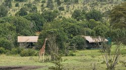 Porini Rhino Camp