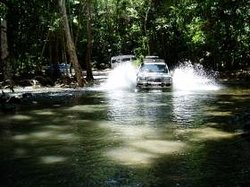Tropical Tours - Day Tours