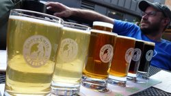 Beer & Bike Day Tours