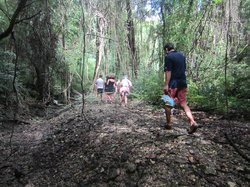 Eco Adventures Barbados - Day Tours