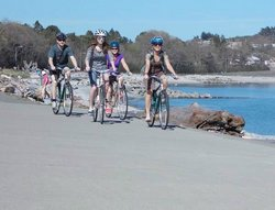 The Pedaler Cycling Tours