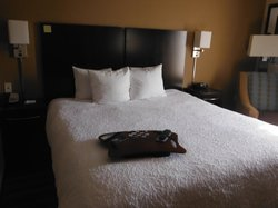 Hampton Inn and Suites Flint / Grand Blanc