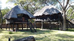 Sikumi Tree Lodge