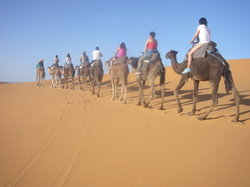 SaharaTours4x4 - Day Tours